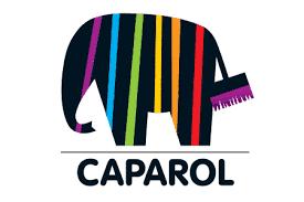 Фарба Amphibolin від Caparol: вичерпно про безповітряний спосіб нанесення